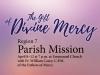 Parish Mission 2018
